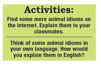 Animals Idioms_03